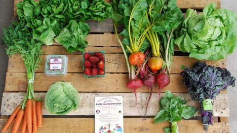 蔬食有助免疫系統維持正常運作 疫情之下「素人」當道
