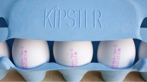 對母雞好、對環境也好 荷蘭品牌 Kipster 碳中和雞蛋成超市搶手貨