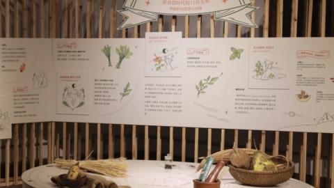「女農與食物的產地」以性平角度重識科技