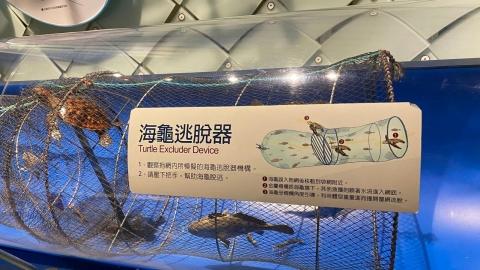 誰的海洋文化,怎樣的博物館展示?  >>>  期待一座在地/原民觀點的海洋博物館