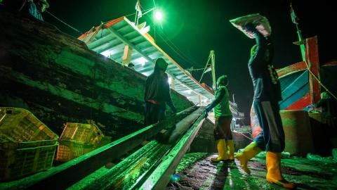 人權警訊 綠色和平:台灣外籍漁工保障有待加強