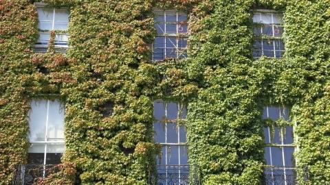 建築法規追不上減碳期程 細數「零碳」鋼筋混凝土結構少算的碳排放