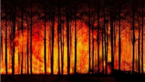 人類活動加劇熱浪 「熱蓋」作用未來將繼續擴大