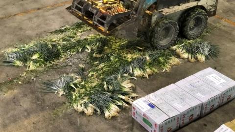 10分鐘測198種農藥殘留 全台果菜市場可望跟進質譜快檢技術
